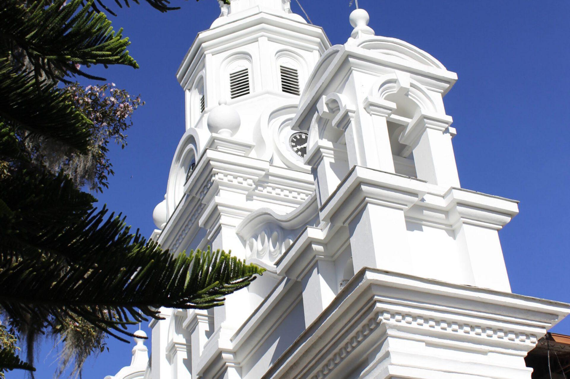 SantigoMontoyaLOpez_CCyP_salamina.jpg (2)